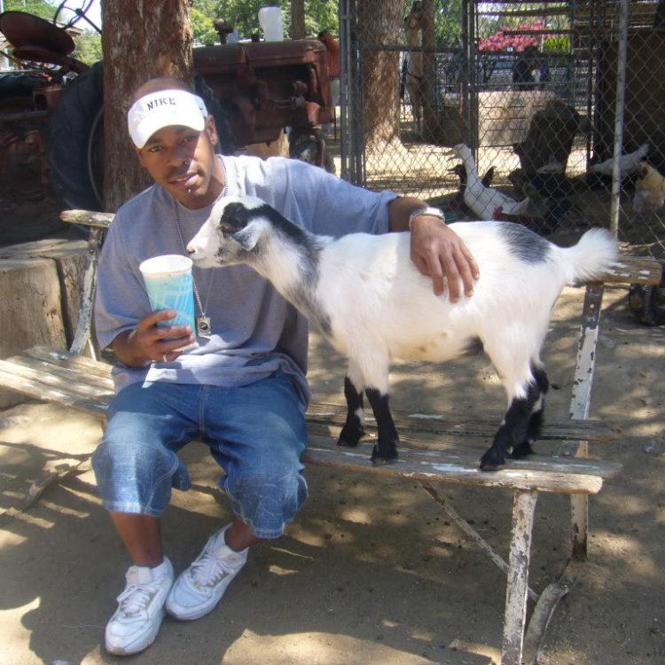 2008 Los Angeles Petting Zoo